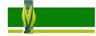 Ayurka - Ayurvedic Medicine Online Store